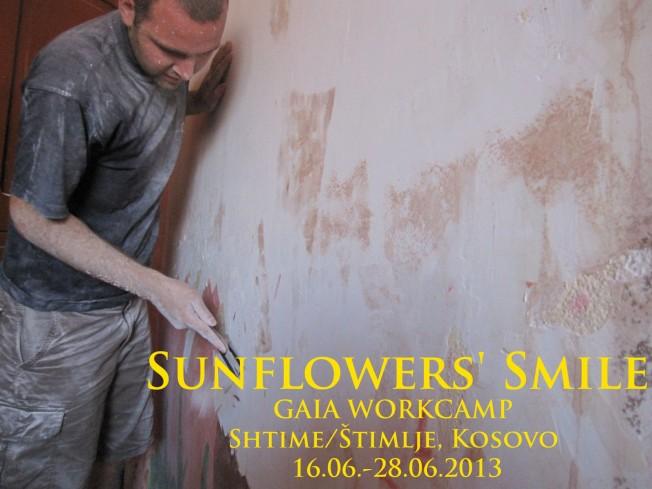 Sunflowers Smile