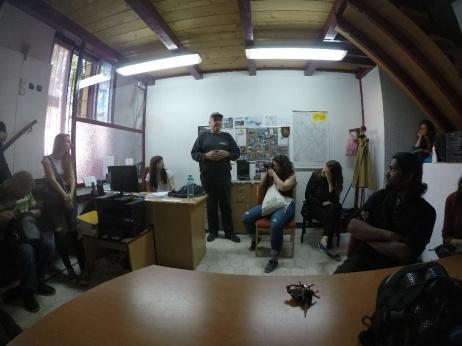 Novi Sad 7